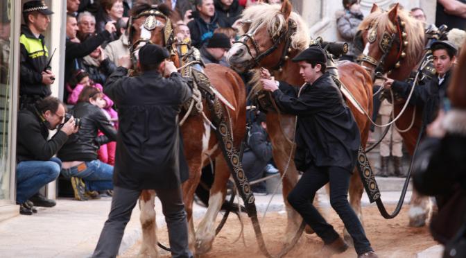 Aquest diumenge, viu els Tres Tombs de Sant Antoni a Valls
