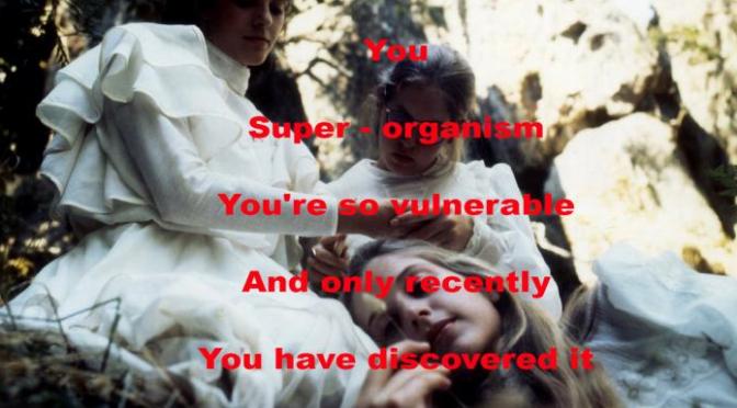 We are a plot device, la proposta de Regina de Miguel